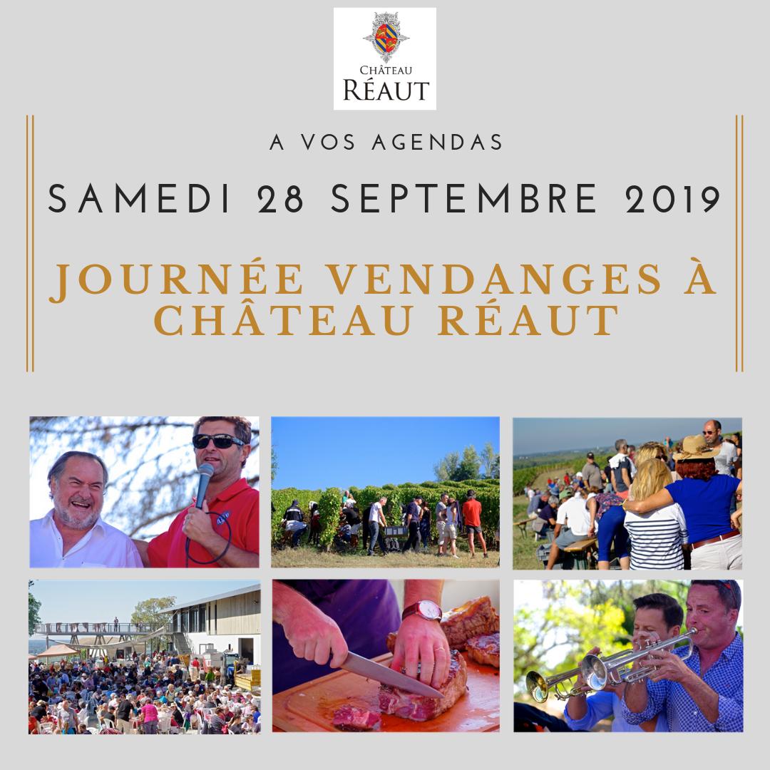 Vendanges 2019 - Château Réaut