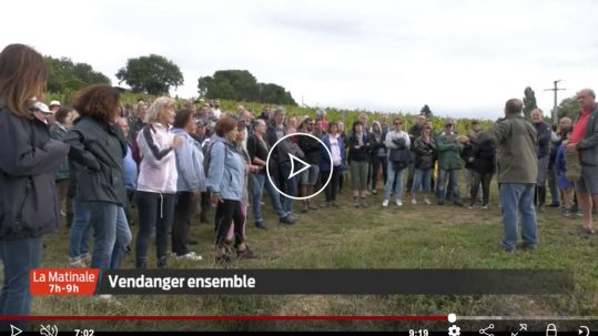 reportage-chateau-reaut-television